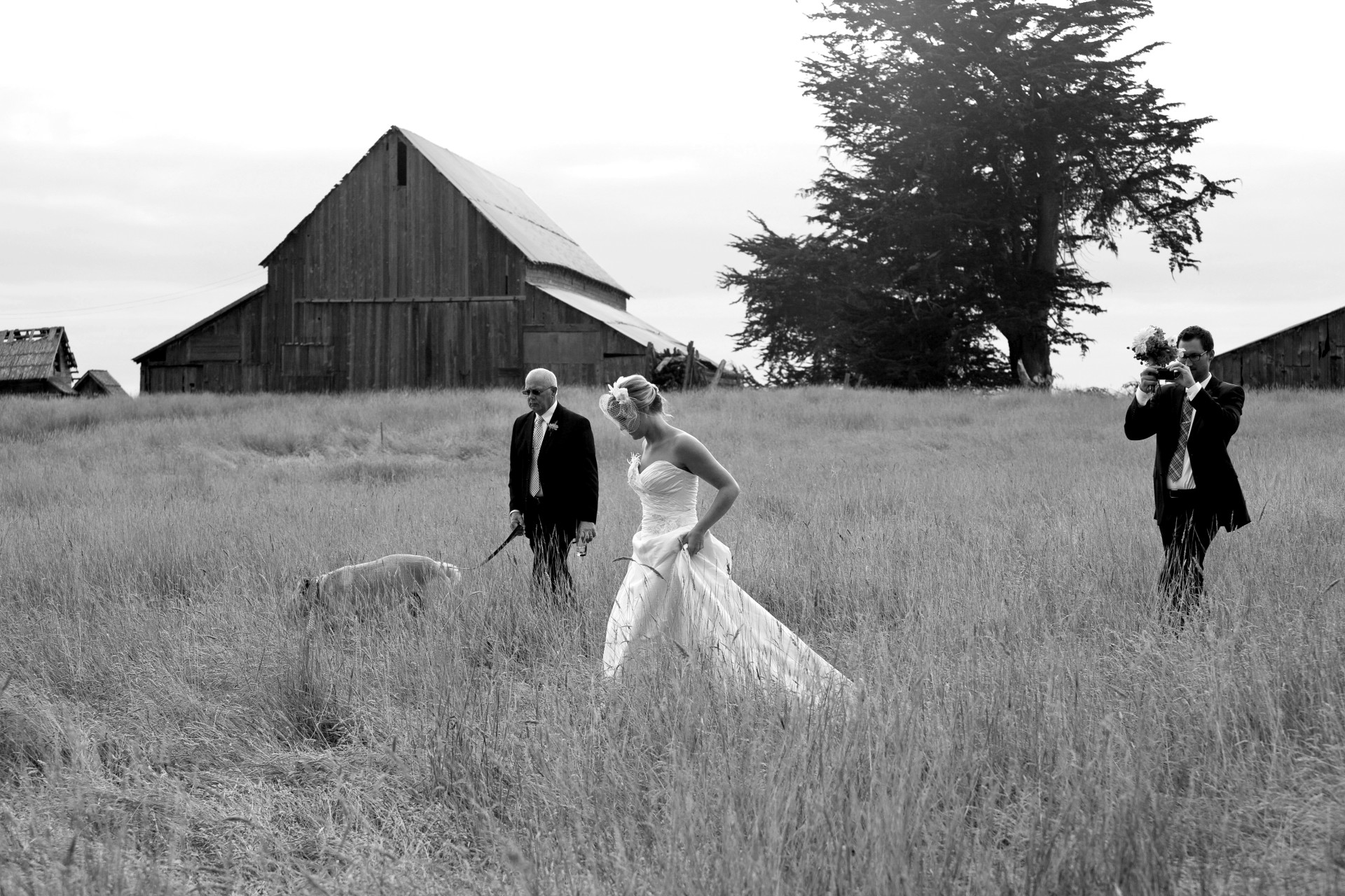 jperlman rlutge mendocino weddings spring ranch 2
