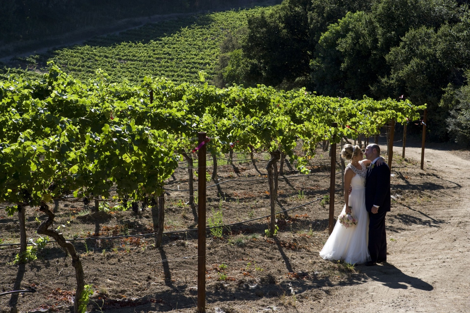 thomas fogarty winery wedding - 16
