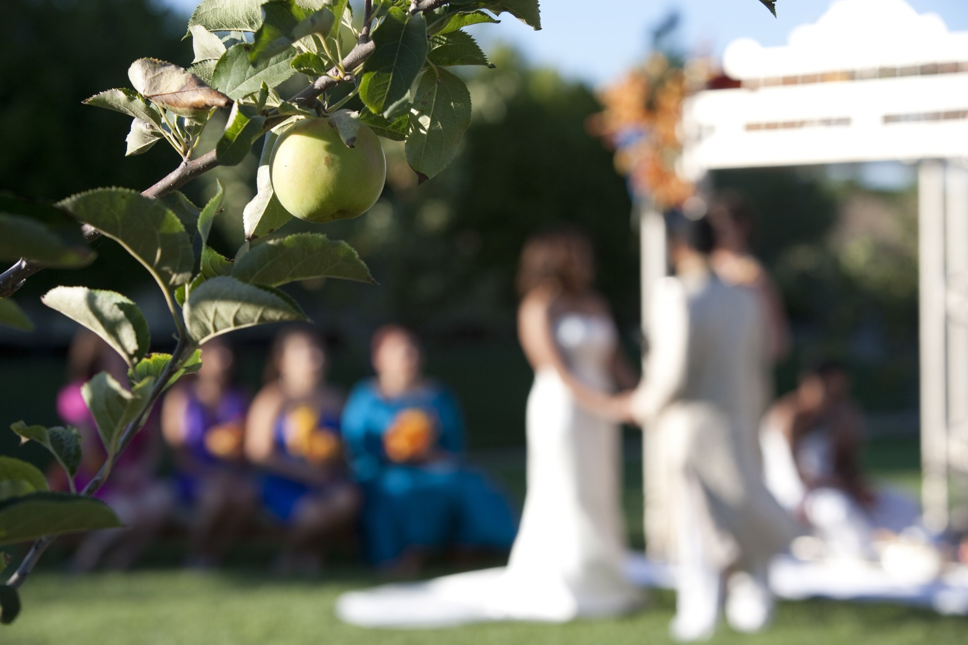 Ceremony at the Carneros Inn